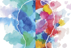 Как развить свой эмоциональный интеллект?