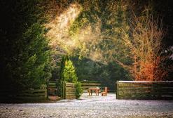 Новогодние праздники: как пройти реколлекции не выходя из дома?